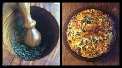 Dried mint with pestle and mortar; Quiche